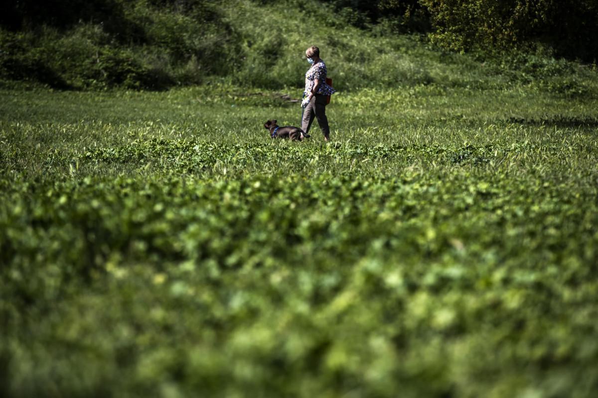 Italia: la curva del contagio si conferma decrescente